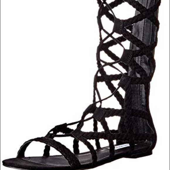 e1112a4129a Steve Madden Tall gladiator sandal NWT